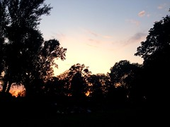 (springlovers) Tags: park trees sunset summer nature germany evening afternoon sonnenuntergang magdeburg goodnight dmmerung anderelbe