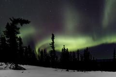 Northern Lights (Alan Vernon.) Tags: winter red sky green alaska night stars landscape lights scene nighttime aurora northern aura magnetic celestial borealis