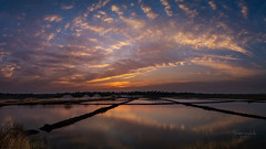 303 - Last light of the day (Gladson777) Tags: life sunset sky panorama india beautiful clouds rural landscape twilight quote vibrant sony salt super calm quotes maharashtra pan alpha mumbai a58 vasai widescape