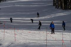 Arizona Snowbowl Grand Canyon Express Ski Lift Opening Celebration (Coconino National Forest) Tags: arizona arizonasnowbowl coconinonationalforest flagstaffrangerdistrict forestservice grandcanyonexpressskilift nationalforest sanfranciscomountain sanfranciscopeaks usforestservice usfs flagstaff forest grandopening outdoors ski skilift skiresort skirun skiing snow snowboard winter unitedstates