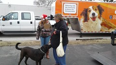 Pet Day 2016 (Hospice Hearts) Tags: hospicehearts wwwhospiceheartsorg httpswwwfacebookcomhospicehearts animalrescue nonprofit 501c3475247265 champaign urbana illinois il petday saltlight wwwsaltandlightministryorg 121016 december102016 adopt adopted spay neuter lowcost lowcostspayneuter lowincome lowincomeassistance help helping dogs donate dog donating petfood universityofillinoiscollegeofveterinarymedicine universityofillinois universityofillinoisveterinaryteachinghospital universityofillinoismobilesurgicalunit universityofillinoissheltermedicineprogram cat cats community foster feline felines foreverhome family grooming vaccinations microchipped microchip microchipping santa santaclaus santaclaws petphotos petphotoswithsanta thedogdenllc