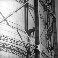 102759 09 (ndpa / s. lundeen, archivist) Tags: nick dewolf nickdewolf october bw blackwhite photographbynickdewolf 1959 1950s film 6x6 mediumformat monochrome blackandwhite mass massachusetts plymouth harbor plymouthharbor tank holdingtank storagetank oilholdingtank oilstoragetank scaffolding beams