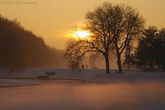 Tervuren.Belgium (Natali Antonovich) Tags: tervuren belgium belgie belgique winter snow frost christmas christmasholidays nature sun sunset landscape park