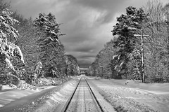 leaving town / black and white (twurdemann) Tags: 03ndsoftgrad 8mile algomacentralrailway blackandwhite canadiannationalrailway fifthline fujixt1 gnd1s landscape leeseven5 mile8 nature niksilverefex northernontario ontario railroad railway saultstemarie snow storm train traintracks trees winter xf55200mm
