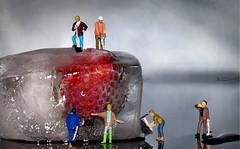 Miniaturarbeiter (nicoheinrich86) Tags: strawberry erdbeere ice icecube miniature miniatur figures figuren plastic macro closeup reflection reflektion wasser water cold worker little tiny toys nikcollection nikon d5300 dof details deutschland