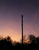 Radio mast in the early evening (michaelschoob) Tags: nature evening technic radio nsa scene silhouette mast