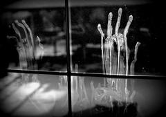 Koszmar z ulicy Wydmowej (stempel*) Tags: gambezia polska poland polen polonia pentax k30 50mm sade budy międzyborów flickr koszmar z ulicy wydmowej wydmowa horror bw czb prints 7dwf