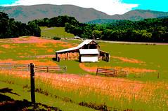 14-3150-p3 (George Hamlin) Tags: virginia arcadia posterized rural farm barn hay bales fence grass mountain backdrop hills bucolic peaceful serene colorful photo decor george hamlin photography shenandoah valley