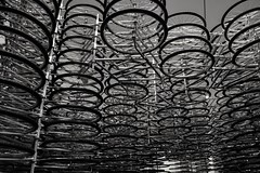 2017-01-23_08-07-46 (beatricechillà) Tags: florence italy mostra arte moderna modern art artist artistic installation bicycles chinese aiweiwei china black white wonderful magnific magnificent amazing amazement astonished nikon nikonphoto nikonphotography photo photography