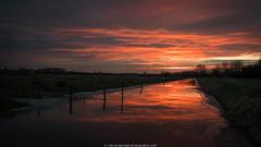 the sky tonight (28jan17) [Explore #155] (robvanderwaal) Tags: netherlands sunset wolk reflection reflectie nederland rvdwaal clouds voorneputten robvanderwaalphotographycom 2017 lucht cloud sky voorne zonsondergang wolken polder landschap landscape