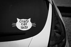 Crazy cat lady ~ 070/365 2017 (joriks) Tags: 2017 365 crazy fun funny lady women woman car sticker white cat pussy animal cute light dark