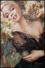 Marilyn Cherry Blossom (ARTbyAngieBraun) Tags: marilynmonroe theodanella angiebraun marilyn painting portrait poster romantic beauty smile woman marilynart masterpiece art artwork oil