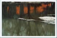 image0000001A (Vincent DiPietro) Tags: nyc thegates centralpark contax rx kodakgold film