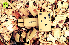 Danbo - Wood Pieces (Danboard Belgium) Tags: wood brown black sport yellow japan toy actionfigure amazon pieces outdoor skate skateboard minifig piece arttoy kaiyodo yotsuba danbo toyart revoltech japantoy danboard