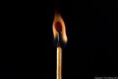 20150814-_E1A5802.jpg (Vaughan Weather) Tags: stilllife hot art fire smoke burning flame match stick