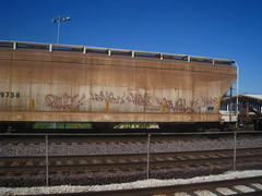 SIVEL (Billy Danze.) Tags: chicago graffiti mayor have d30 freight rwf sivel