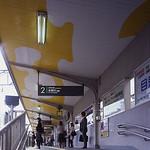 現代アートによる街づくりの写真