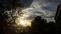 Sunset at Home. (lucyzillinger) Tags: sunset tree clouds niceday
