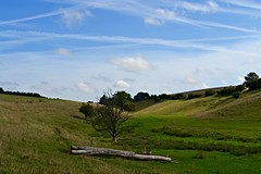 Coln Valley (heathernewman) Tags: uk blue england sky tree green clouds countryside view bluesky cotswolds farmland gloucestershire grassland bibury
