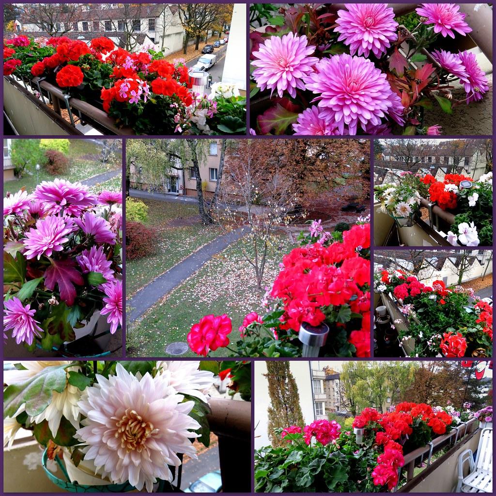 the world's best photos of balkon and geranien - flickr hive mind, Gartengerate ideen