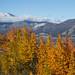 Montanhas Saint Elias