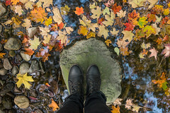 That melancholy time of year (laskaproject) Tags: park blue autumn trees red sky toronto canada color reflection green fall nature water girl beautiful crimson leaves yellow rock clouds contrast standing forest season outdoors gold leaf maple woods scenery shoes colorful stream bright boots pov fallcolors vivid females ladscape lookingdowm