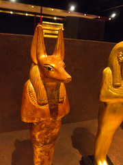 Egyptian Jackal-2 (quinet) Tags: berlin germany treasure tomb egyptian grab pharoah tombe tutankhamun schatz pharaon trsor gyptien 2013 gypter