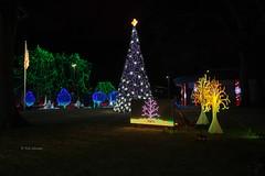 Nela Park 30 (rwerman) Tags: ge generalelectric nelapark christmas christmaslights christmastree lights eastcleveland