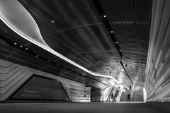 Inside a Vein (Orange Orb Photography) Tags: stairs lowangle lighting barangaroo tiltshift pedestrians thewynardwalk sydney city volume walkway longexposure tunnel escellator