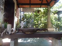The Legend Kuchipudi Dancer Dr. Vyjayanthi Kashi's Shambhavi School of Dance Outside Photography By Chinmaya M.Rao  (55)