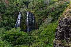 Opaeka'a Falls オパエカア滝, Kauai, Hawaii, USA (takasphoto.com) Tags: opaekaafalls 80400mmf4556dvr afvrzoomnikkor80400mmf4556ded america aqua besalt cascada cascade color d610 eeuu estadosunidos exterior fullframe green hawaii island kauai kauaʻi lava lens longexposure meltwater nature nikkor nikkor80400mm nikkor80400mmf4556dafvred nikkorlens nikon nikond610 northamerica oceanea outdoor pacific pacificocean polynesia river slowshutterspeed stream supertelephoto telephoto tripod usa unitedstates unitedstatesofamerica vandfald vasser verde vesiputous volcanic volcano wailuariver wailuarriverstatepark water waterfall オパエカア滝 カウアイ 自然 飛瀑 폭포 美国 美國 翠 米国 緑 緑色 カウアイ島 瀑布 瀧 水 滝 ニコン ニッコール 三脚