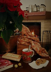A casa (Aellevì) Tags: aellevì quiete plaid fuoco fiamma camino stelladinatale rame tisana biscotti tavolino libro orecchini alluminio soffice soft bricchi caffettieranapoletana brocca quadretti tovaglia caffè pace silenzio natale festenatalizie serenità paceinteriore acasa giovanniverga lettera milano paiolo