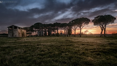 Le campagne dell'Appia (Luca.Pietrobono) Tags: campagna appia roma