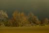 (the best maio) Tags: campagna dallamacchina autumncolors countryside