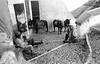 Pause. (renphotographie) Tags: analog film contaxg1 kodaktmax argentique grèce santorin noiretblanc bw bnw monochrome film35mm streetphotography