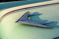 January First Frost (Bill Baldridge) Tags: auto pontiac chrome green frost car
