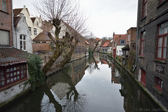 Bruges Canal (Bri_J) Tags: bruges belgium nikon d7200 canal water tree reflection winter