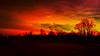 Red in the morning (ildikoannable) Tags: red sky sunrise sunset nature landscape redinthemorning trees