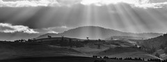 in the light we find (Keith Midson) Tags: sunrays sunset midlands midlandhighway tasmania landscape clouds haze rural australia