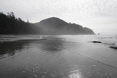 Oregon Coast (kimmacpherson) Tags: oregon oregoncoast beach ocean surfing surf rainforest short sands shortsands manzanita oswald oswaldwest oswaldweststatepark sonya6300 sony