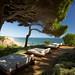 hotel PORTO BAY FALÉSIA | lounge