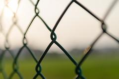 fences (bady_qb) Tags: fence nikon bokeh sigma 30mm d7000