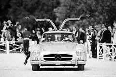 Mercedes-Benz 300 SL - Chantilly Arts et Elgance 2015 (Rmy | www.chtiphotocar.com) Tags: france classic 1955 car sport race mercedes benz photo nikon doors contest arts sigma racing sl richard mercedesbenz 300 concours et sportscar collectable motorsport chantilly elegance lightroom gullwing mille leicht