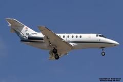 OE-GCE LMML 13-09-2015 (Burmarrad (Mark) Camenzuli Thank you for the 21.8) Tags: cn aircraft airline raytheon registration hawker 800xp lmml 258536 13092015 goldeckflug oegce