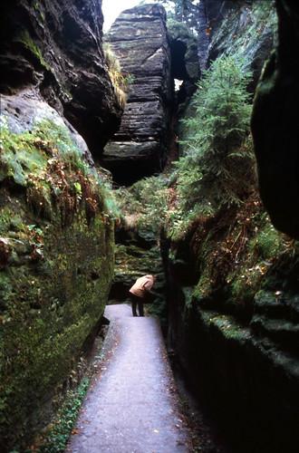 "Elbsandsteingebirge (070) Schwedenlöcher • <a style=""font-size:0.8em;"" href=""http://www.flickr.com/photos/69570948@N04/21760018349/"" target=""_blank"">View on Flickr</a>"