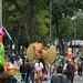 Parade of the Alebrijes 2015 (21)