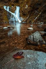 Allerheiligen Wasserflle Herbst (thorsten_fr) Tags: autumn waterfall leaf stones steine blatt schwarzwald blackforest allerheiligen wasserflle oppenau