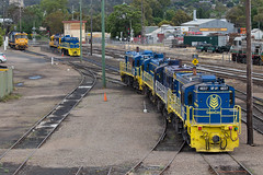 Stabled (PJ Reading) Tags: yard rural pacific diesel wheat south country grain cargo southern national nsw newsouthwales locomotive stable freight regional pn bulk cootamundra riverina shunt coota stowed graincorp stabled 81class 48class pacnat 482class