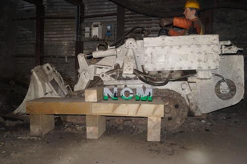 YBS NCM Model
