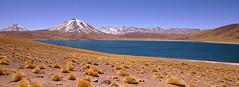 Time (Henri Koga) Tags: chile atacama atacamadesert lagunamiscanti lagunamiñiques lagunasaltiplânicas henrikoga